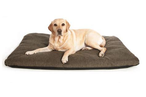 large breed dog beds best dog beds for large breeds
