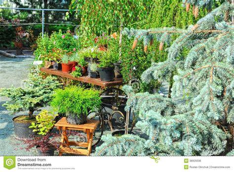 landscaping stock photo image 38929336