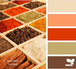 Orange Spice Color by Spices Orange Brown Sage Color Pinterest