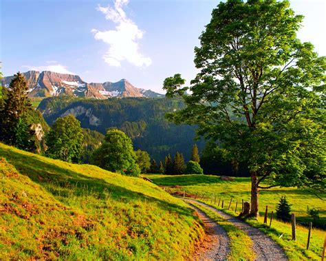 wallpaper switzerland summer landscape mountains road
