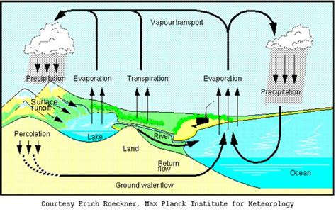 diagram of water illustration water cycle images
