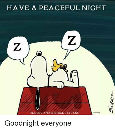 Have A Good Night Meme - have a peaceful night snoopy and the peanuts gang opnts goodnight everyone meme on sizzle