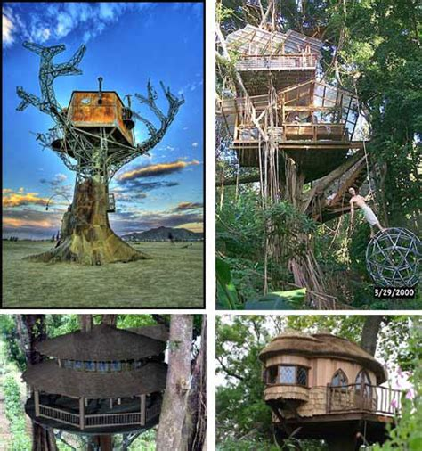 Customizable House Plans by Look Up 15 More Amazing Tree Houses From Around The