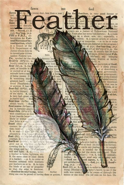 images  feathers  pinterest feather