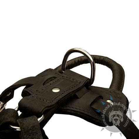 Most Comfortable Safety Harness by Agitation Protection Leather Harness For Pitbull H1