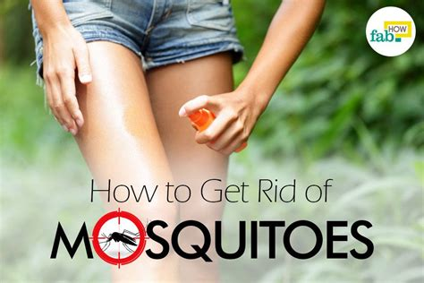 how to get rid of mosquitoes with home remedies how to how to get rid of mosquitoes fab how