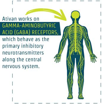 Ativan Detox Centers by Ativan Addiction And The Best Rehab Centers For Treatment