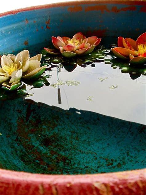 Lotus Garden Joplin Mo by Pin By Grace Mearns On Peace Beautiful