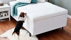 air mattresses  mattress stores provide
