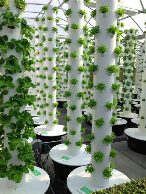vertical aeroponic tower garden greenhouse gardening