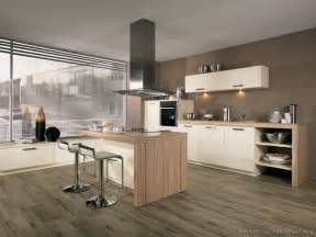 white wood kitchen cabinets pictures of kitchens modern white kitchen cabinets