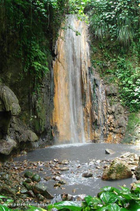 St Lucia Botanical Gardens by Botanical Gardens St Lucia