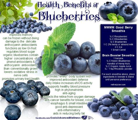 anthocyanins in health and disease books best 20 blueberries health benefits ideas on