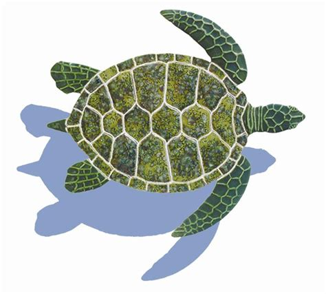Backsplash Ceramic Tiles For Kitchen by Ceramic Shadowed Green Sea Turtle Small Mosaic