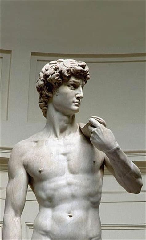 michelangelo david david by michelangelo submited images