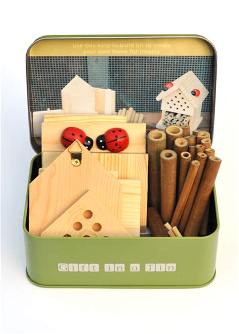 gift for home buy make your own insect house gift set
