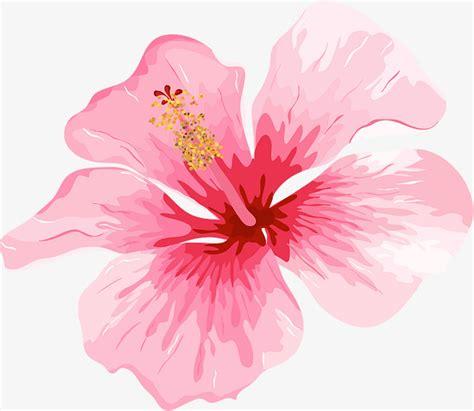 Hermosa Hawaiian Pink acuarela de flores rosa rom 225 ntico pink romantico flor