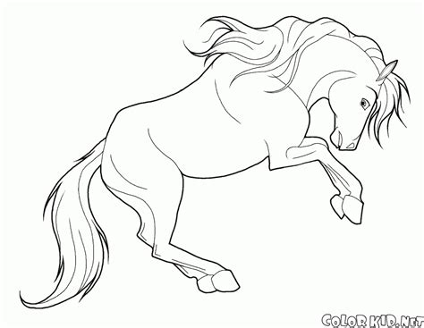 horse coloring page print out coloring page horse in motion