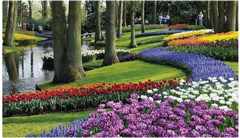 Ladiesfashionsense Com Blog Keukenhof Flower Gardens Flower Garden Amsterdam