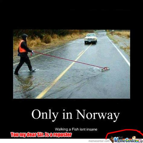 Fishing For Likes Meme - rmx yes its a guy walking a fish your argument is