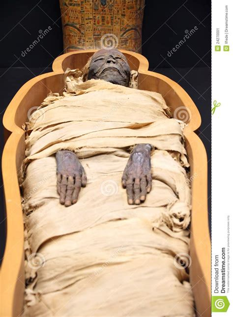 egyptian mummy stock image image 24270001