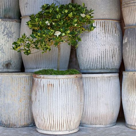 Large Planters For Trees by Large Garden Plant Pots Modern Patio Outdoor