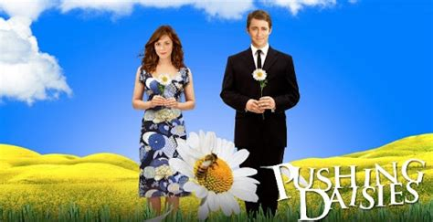 Pushing Daisies Totally Rocks by Letty Or The Confessions Of A Tea Drinker