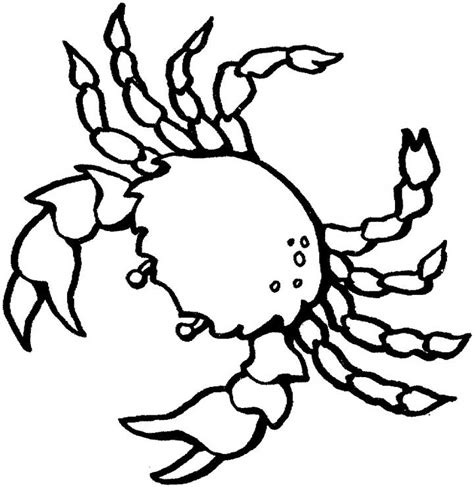 easy crab coloring page crab coloring pages free printable coloring pages simple