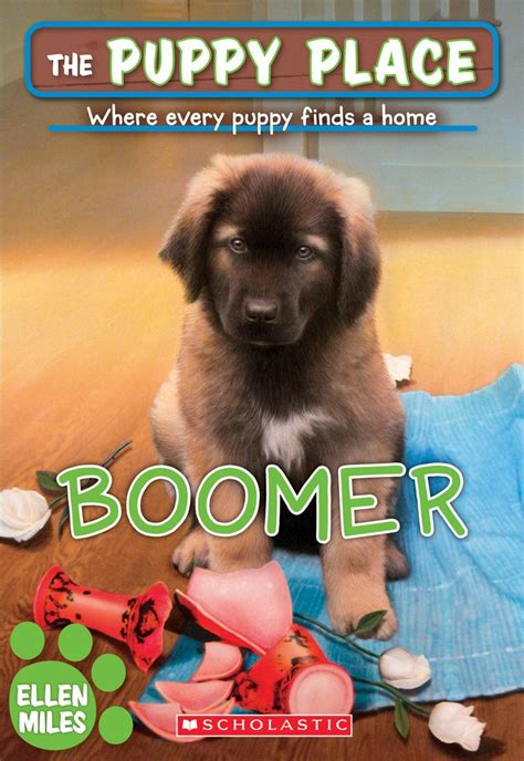 the puppy place boomer by scholastic