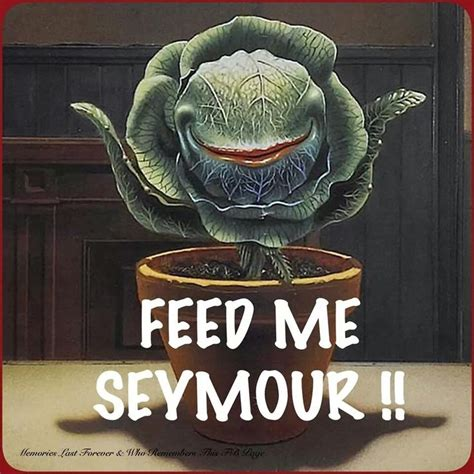 Feed Me Seymour Meme - little shop of horrors random pinterest