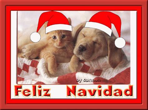 imagenes graciosas de animales en navidad cosas divertidas navidad perros con gorro de papa noel