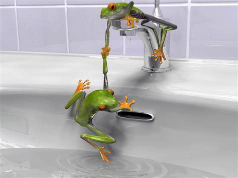 frog in bathtub free hq frog wallpaper free hq wallpapers