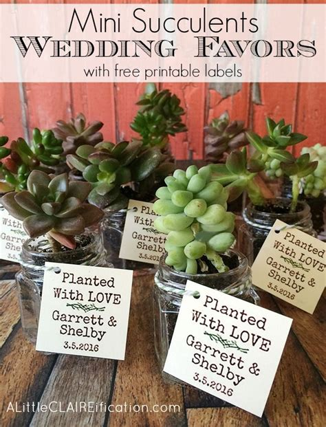 Wedding Gift Jars by 42 Best Wedding Favors Ideas Images On