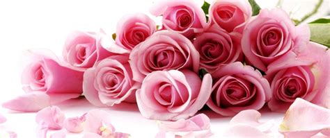 how to send flowers for valentines day the power sending flowers for s day cometao