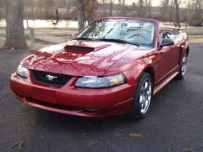 Ford Mustang 2003 2003 Ford Mustang Overview Cargurus
