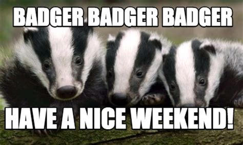Badger Meme - meme creator badger badger badger have a nice weekend