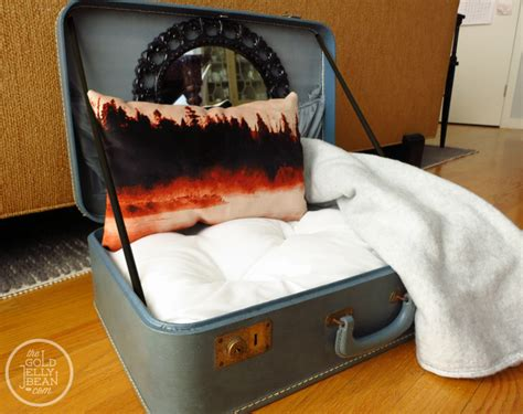 dog bed diy diy vintage suitcase dog bed the gold jellybean