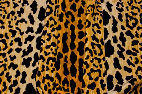 leopard print fabric leopard print fabric by the yard animal prints fabric