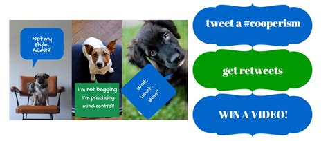 Twitter Sweepstakes - blog pet scoop