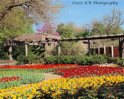 Garden Of Kansas by 17 Best Images About Riverside Wichita Ks On