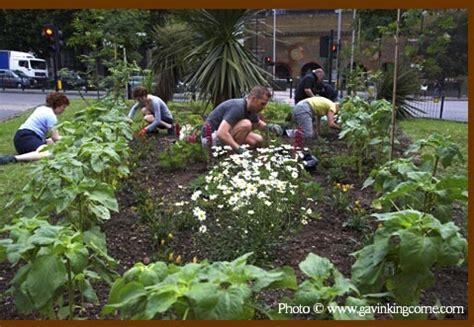 Gardening Blogs The Guerrilla Gardening