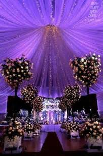 Eggplant Drapes Wedding Canopy Lights Led Canopy Indoor Canopy