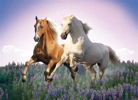 free printable horse jigsaw puzzles free horses jigsaw puzzle puzzlewarehouse com