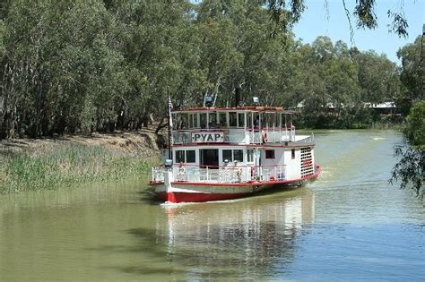 237 best murray river australia love of paddle steamers - Paddle Boats Swan Hill