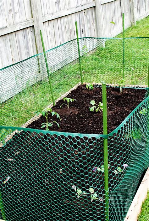 25 best ideas about cheap raised garden beds on