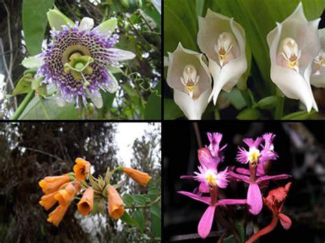 ecosistema laguna de apoyo nicaragua