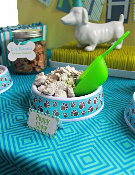 pet themed kids parties best kids party supplies covered in mod podge wonderful pet birthday party ideas