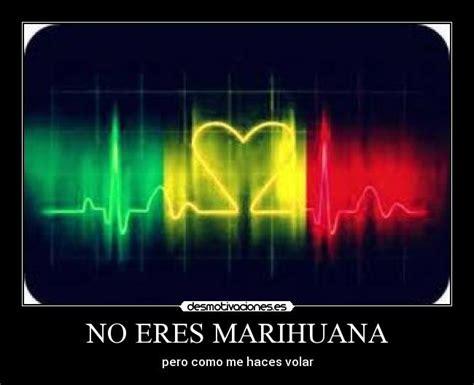 imagenes de weed con frases de amor no eres marihuana desmotivaciones