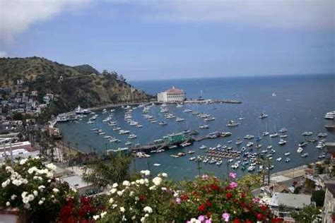 catalina boat ride cost 17 best images about birthday island on pinterest trips