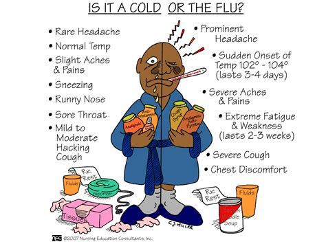 The Cold part time classes a flu cold and memories of